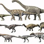 Prehistoric Era Dinosaurs Of Niger Poster by Nobumichi Tamura