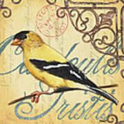 Pretty Bird 3 Poster