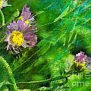 Pretty Little Weeds Photoart Poster