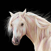 Pretty Palomino Pony Painting Poster