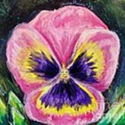 Pretty Pink Pansy Person Poster
