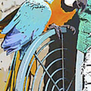 Pretty Polly Poster
