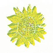 Pretty Sunflower  Poster by Lynn-Marie Gildersleeve