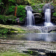Pretty Waterfalls In Rainforest Poster