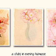 Primrose Triptych Poster