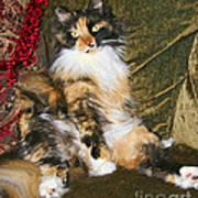Princess Miss Gizzie By Diana Sainz Poster