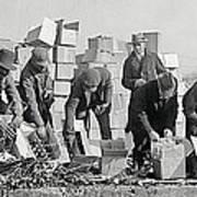 Prohibition Feds Destroy Liquor  1923 Poster by Daniel Hagerman