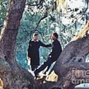 Proposing In A Tree Poster