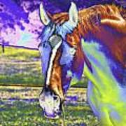 Psychedelic Horse Poster