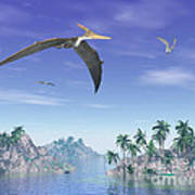 Pteranodon Birds Flying Above Islands Poster