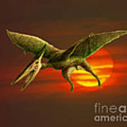 Pterodactyl Poster