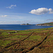 Puffin Island From The Skelligs Ring Poster
