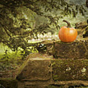 Pumpkin Poster by Amanda Elwell