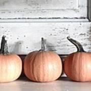 Pumpkin Trio Poster