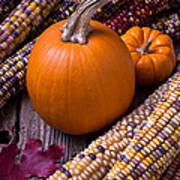 Pumpkins And Corn Poster