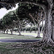Punchbowl Cemetery - Hawaii Poster