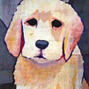 Puppy Dog Poster by Lutz Baar