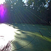 Purple Angel Of Lagoon Poster