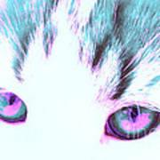 Purple Cat Eyes Poster