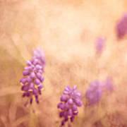 Purple Dreamy Poster