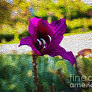 Purple Flower In Oil Poster