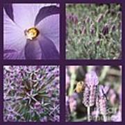 Purple Flowers Collage Poster