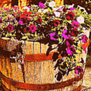 Purple Flowers In Rusty Bucket Poster