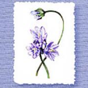 Purple Flowers Serenade Botanical Impressionism Poster