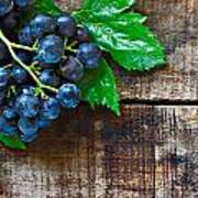 Purple Grapes On A Rustic Wooden Table Poster