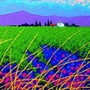 Purple Hills Poster