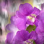 Purple Impression Poster