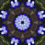 Purple Iris Kaleidoscope Poster