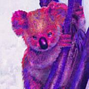 Purple Koala Poster