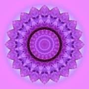 Purple Pink Kaleidoscope Poster