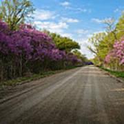 Purple Road Poster
