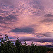 Purple Skies Over Georges Michel Wine Estate Poster