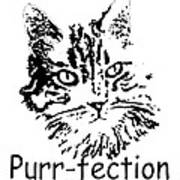 Purr-fection Poster