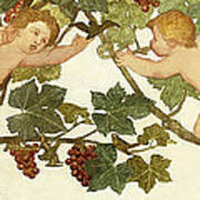 Putti Frolicking In A Vineyard Poster