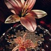 Puzzled Flower Poster