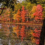Quabbin Reservoir Fall Foliage Poster
