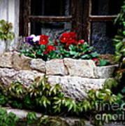 Quaint Stone Planter Poster
