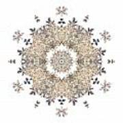 Queen Annes Lace I Flower Mandala White Poster