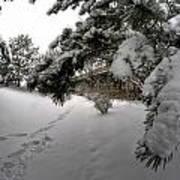 Queen City Winter Wonderland After The Storm Series 0029 Poster