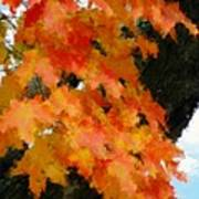 Quick Take On Autumn Poster