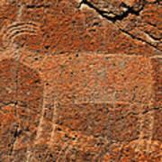 Big Horn Sheep Rock Art B Poster