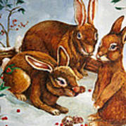 Rabbits In Snow Poster