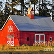 Radiant Red Barn Poster