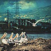 Radioactive Days Poster by Taylan Apukovska