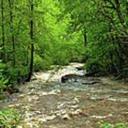 Raging Waters - West Virginia Backroad Poster