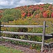Rail Fence In Autumn Poster